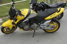 Hornet (jaune 2)