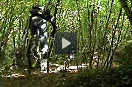 Vidéo Terrain en VTT (2ème jour)